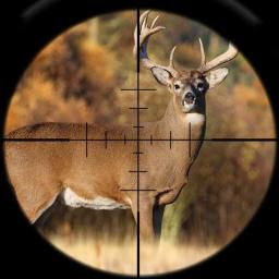 Deer Hunting Calls Soundboard