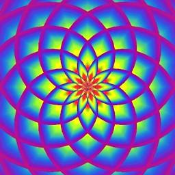 Magic Lotus Music Visualizer & Live Wallpaper