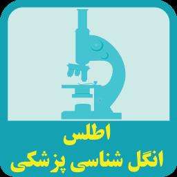اطلس انگل شناسی پزشکی