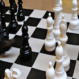 Chess Titans 3D: free offline game