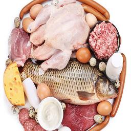 غذای ایرانی و خارجی باگوشت،مرغ،ماهی