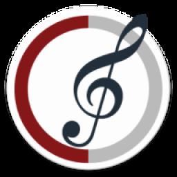 تأثیرات موسیقی(موسیقی دان)