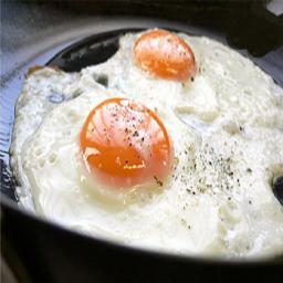 انواع غذا با تخم مرغ