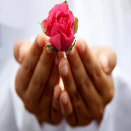 راههای قرآنی برای رفع مشکلات