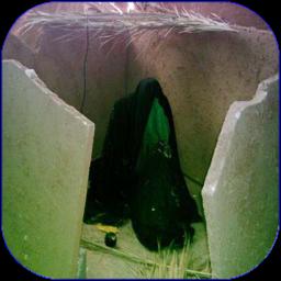 زندگینامه حضرت زهرا